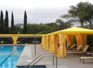 sari-renkli-kamelya-havuz-yani
